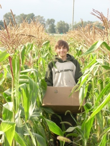 picking and carrying corn Zach F